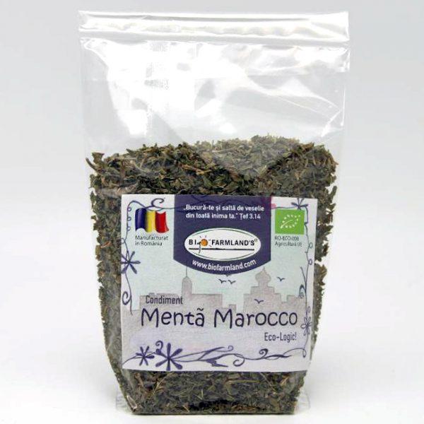 Condiment Mentă Marocco